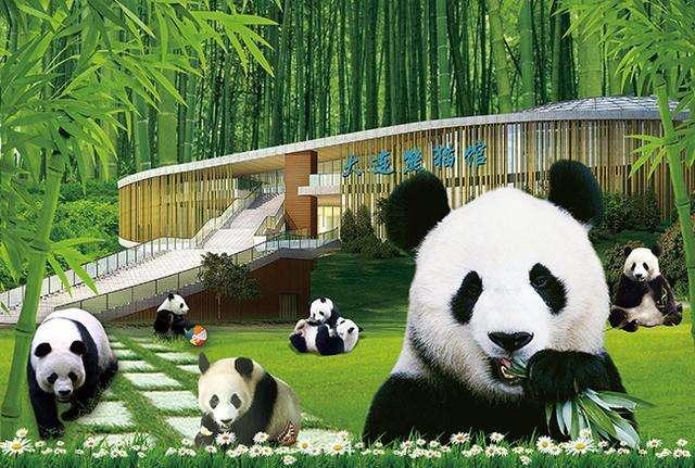 大连森林动物园主题展馆——熊猫馆